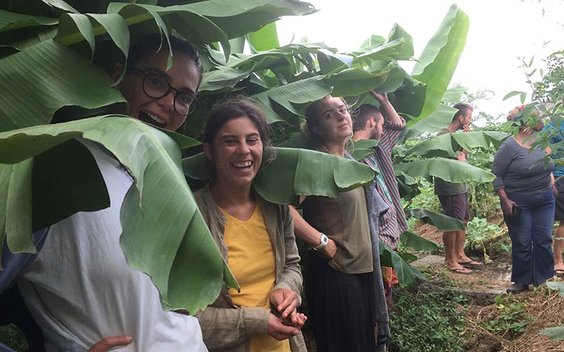 Smiling people stand under banana leaves.