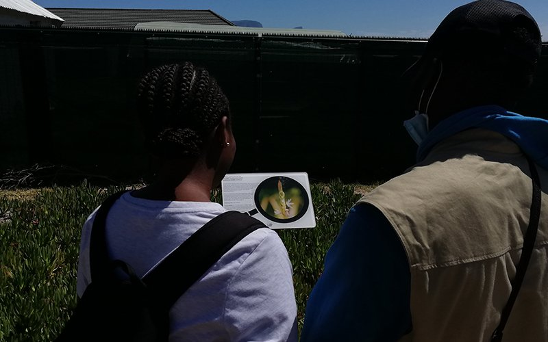 Two people looking at a plant information board.