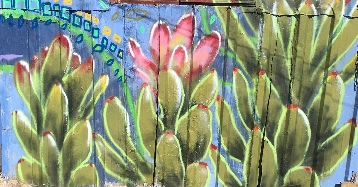 Co-Imagining healthy futures through arts: Kitchen Graffiti in Vrygrond, Cape Town